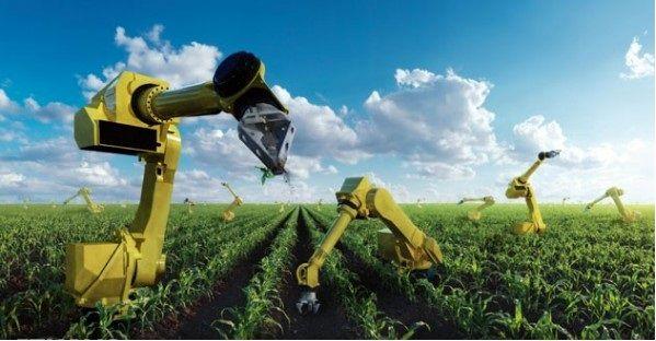 رقابت شدید کشورها در حمایت از بخش کشاورزی