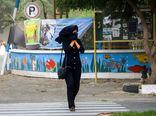 شروع وزش باد شدید در تهران