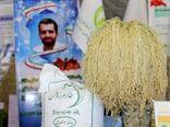 خودکفایی در تولید برنج با کشت ارقام هستهای روشن و شهریار