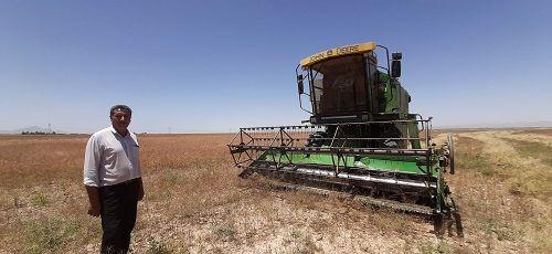 بزرگترین مزرعه خاکشیر خرامه برداشت شد
