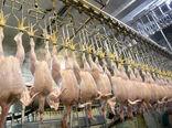 ممنوعیت صادرات مرغ لغو شد