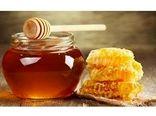 تولید 1800 تن عسل در بابل/ صادرات 1500 تنی