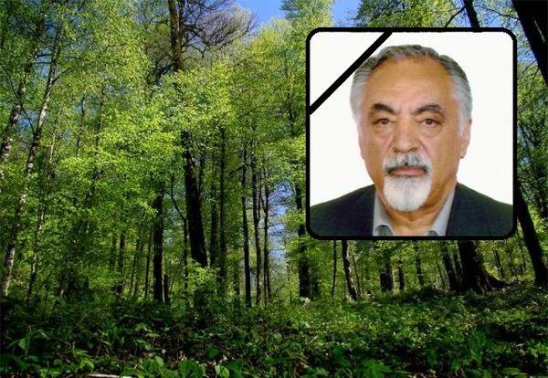 جنگل یکی دیگر از حافظانش را از دست داد