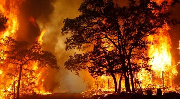 3 هکتار از مراتع روستای طزره دامغان در آتش سوخت