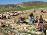 تامین 220هزار تن نهاده های دامی برای عشایر