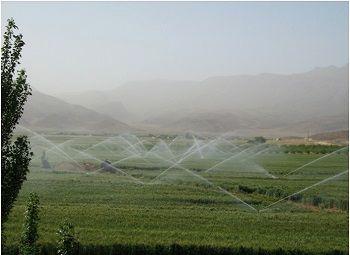استان کردستان پیشرو در اجرای سیستم های نوین آبیاری
