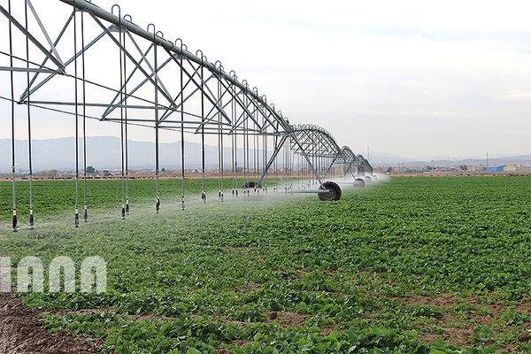 از توسعه گلخانهها تا سامانههای نوین آبیاری