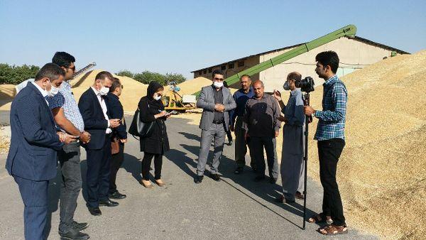 عضویت 183 هزار نفر سهام دار در شبکه تعاون روستایی کردستان
