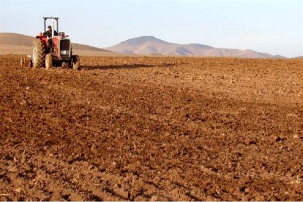 پایان کشت محصولات پاییزی در شهرستان کیار