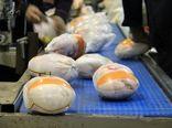 کشتار مرغ روزانه در چهارمحال و بختیاری بیش از نیاز استان است