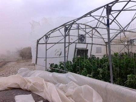خسارت پنج میلیارد ریالی طوفان به گلخانهداران مهریز