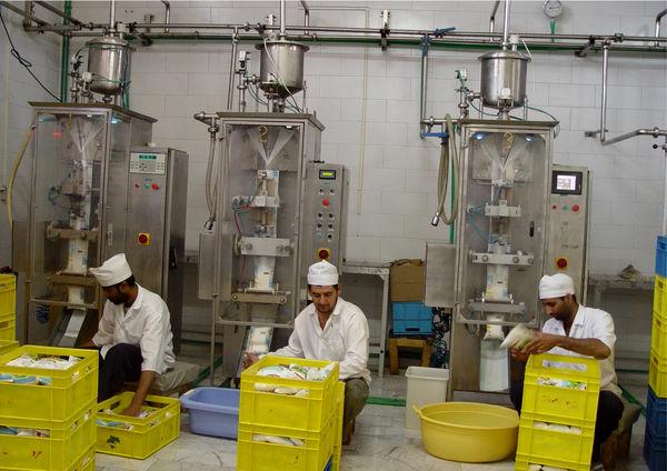 6 هزار فرصت شغلی روستایی وعشایری در سیستان وبلوچستان ایجاد شد