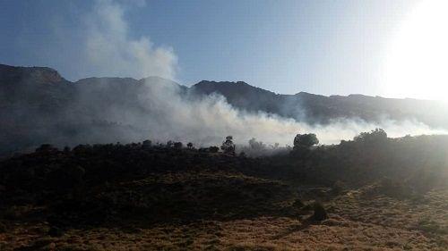 مهار زبانههای آتش در کوه سبز پوشان شیراز