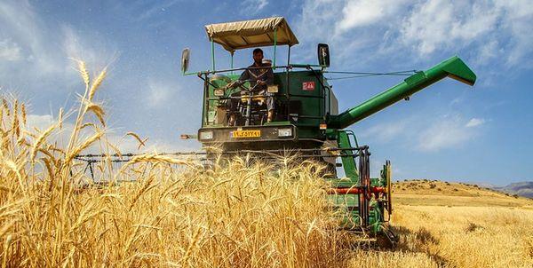 پیشبینی افزایش 2 برابری خرید تضمینی گندم از کشاورزان اصفهانی