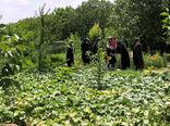 آموزش و ترویج تغذیه سالم در جامعه زنان روستایی و عشایری با ایجاد باغچه های خانگی در شهرستان بناب