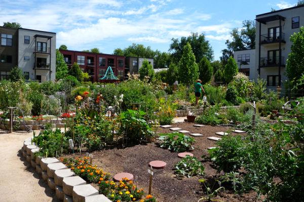 تبدیل کشاورزی شهری به شیوهای از زندگی