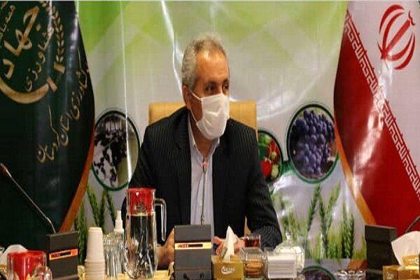 ۵۳۵ میلیارد تومان تسهیلات در بخش کشاورزی کردستان پرداخت شد