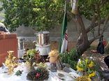 همایش تولید و فرآوری گیاهان داروئی در میاندوآب برگزار شد