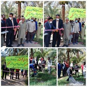 در ششمین روز از هفته جهاد کشاورزی طرح آبیاری کم فشار 53 هکتاری افتتاح شد