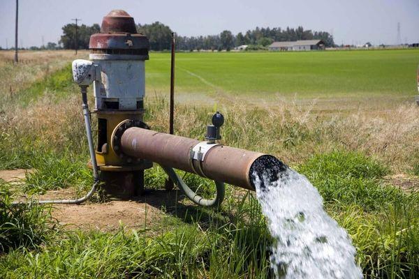 اختصاص یک میلیارد و ۴۴۴ میلیون متر مکعب آب به کشاورزان در شرایط کم آبی توسط وزارت نیرو