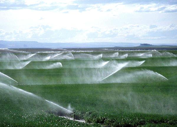 تجهیز 12 هزار هکتار از اراضی کشاورزی استان تهران به سیستمهای نوین آبیاری