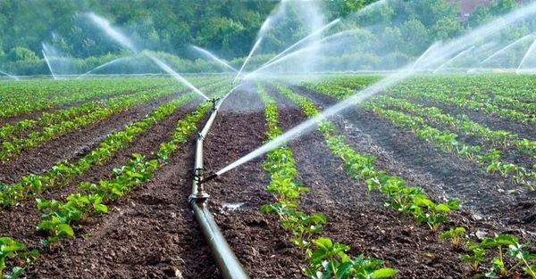 با اجرای طرحهای نوین آبیاری رویای آب کشاورزان مزرعه قریه محقق شد