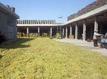 تولید 40 هزار تن کشمش در سال جاری در سطح شهرستان بناب