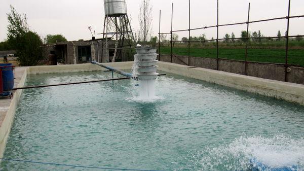اراضی حاشیه شاهرود قزوین استعداد تولید ۹ هزار تن ماهی را دارد