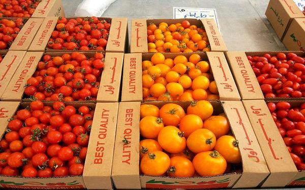2.5 میلیارد دلار محصولات باغی از کشور صادر شد