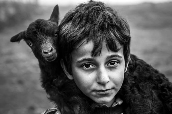 درخشش عکاسان ایرانی در جشنواره بینالمللی دانوب