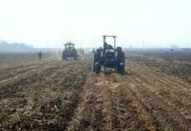 کشت 3300 هکتار از مزارع گندم شهرستان البرز با روش حفاظتی