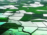 امضای قرارداد حدنگاری یک میلیون هکتار از اراضی کشاورزی