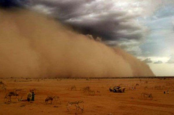 عملیات زیرساختی شورورزی در کانون بحرانی تولید گرد و غبار در حال اتمام است