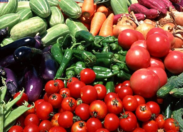 ابلاغ نرخهای خرید تضمینی کشاورزی بهزودی