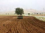 ۱۰ هزار تن بذر کشت پاییزه کشاورزان خراسان شمالی تامین شد