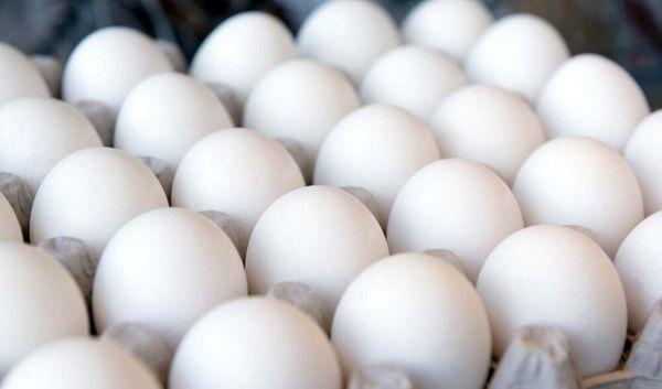منتظر اعلام قیمت مصوب تخم مرغ هستیم