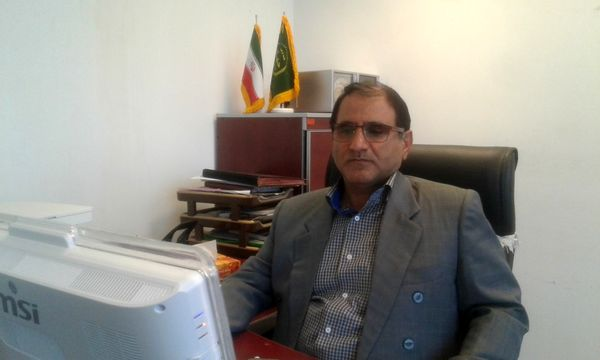 پیشبینی تولید ۲۲۸هزار تن ذرت دانه ای در استان کرمانشاه