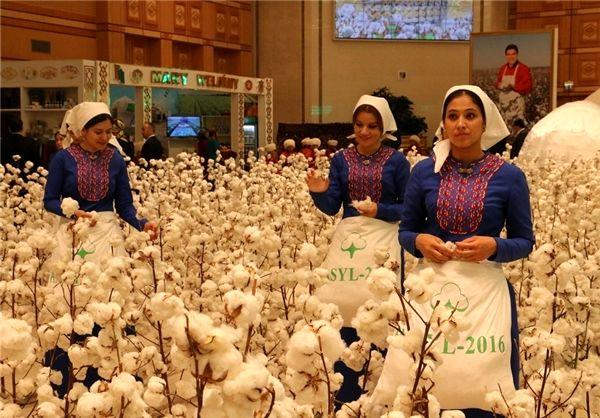 ششمین نمایشگاه بینالمللی پنبه ترکمنستان آغاز به کار کرد