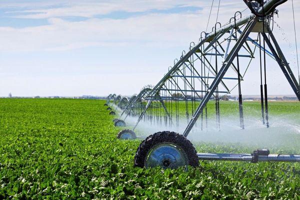 ۲ طرح آبیاری جهاد کشاورزی در دیر به بهرهبرداری رسید