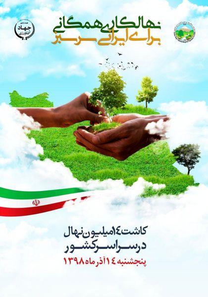 نهالکاری همگانی برای ایرانی سرسبز