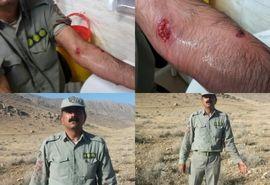 حمله پلنگ به محیط بان پارک ملی بمو