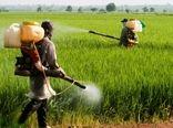 سمپاشی بیش از ۱۵۶هزار هکتار از مزارع گندم و جو