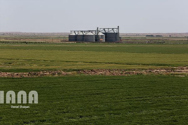 بانکها زمین کشاورزی را وثیقه نمیدانند