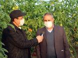 ظرفیتهای بخش کشاورزی شهرستان مرند