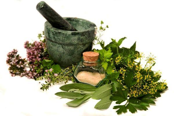توسعه کشت گیاهان دارویی در هرمزگان/ فراهم سازی شرایط صادرات گیاهان دارویی
