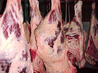 شرکت پشتیبانی امور دام موظف به خرید گوشت قرمز از واحدهای پرواربندی گوساله است