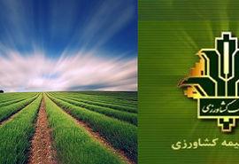تخصیص 7000 میلیارد ریال به صندوق بیمه کشاورزی