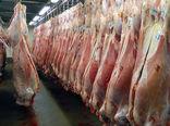 آغاز خرید حمایتی ۱۳ هزارتن گوشت قرمز مازاد دامداران