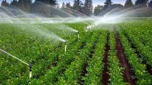 مطالعه توسعه طرحهای سیستم آبیاری نوین در بیش از 6 هزار هکتار از اراضی خراسان شمالی