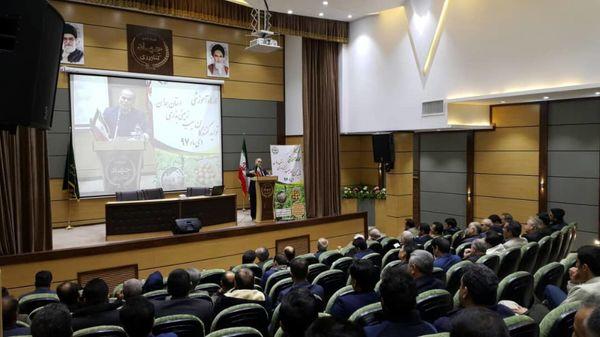کشت 22 هزار هکتار سیب زمینی در  اراضی استان همدان